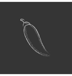 Chilli drawn in chalk icon vector