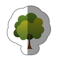 color stamp natural tree icon vector image