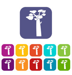 Baobab icons set flat vector