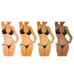 skin tone vector image vector image