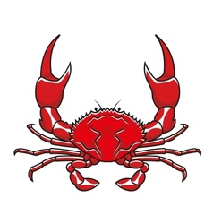Red crab vector