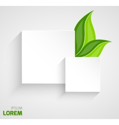 Two paper squares with leaves vector image