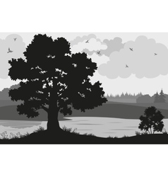 Forest landscapes silhouettes vector