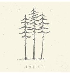 pine minimalism vector image