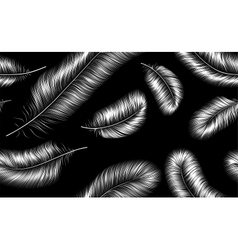 Seamless background with white feathers on black vector image