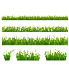 Big collection of green grass vector