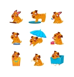 Puppy everyday activities collection vector