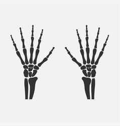 wrist hands bones vector image vector image
