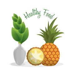Healthy food fruit diet lifestyle vector