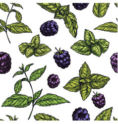 Seamless pattern with mint leaves and blackberries vector