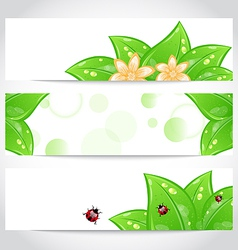 Set of bio concept design eco friendly banners vector