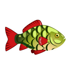 the green fish vector image