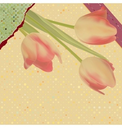 Card with beautiful red tulips polka dot EPS 10 vector image