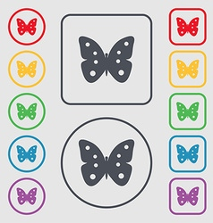 Butterfly sign icon insect symbol symbols on the vector
