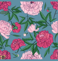 beautiful peonies seamless pattern hand drawn vector image vector image