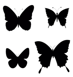 Black silhouettes of butterflies vector image