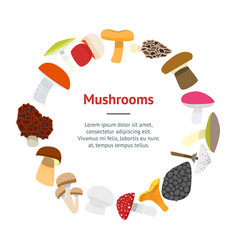 Cartoon mushrooms banner card vector