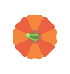halloween pumpkin with green stem vegetable icon vector image