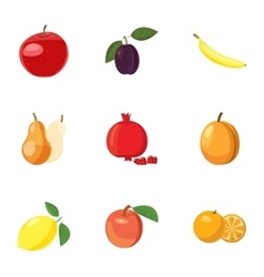 Types of fruit icons set cartoon style vector image
