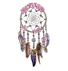 hand drawn ornate dreamcatcher with pink flowers vector image