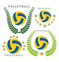 The theme volleyball vector