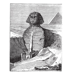 Great sphinx vintage engraving vector