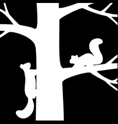two squirrel on the tree vector image