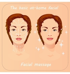 Beauty facial procedure face vector
