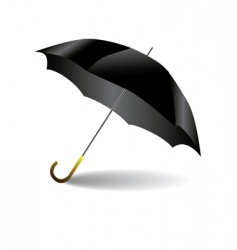 black umbrella vector image vector image