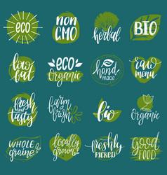 eco organic bio signs vegan healthy vector image