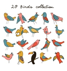 Printcute collection of funny birds vector
