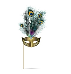Concept of peacock feather on isolated background vector