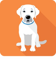 dog Labrador Retriever sitting icon flat design vector image