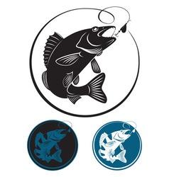the fish walleye vector image