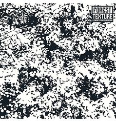 Deciduous forest texture vector