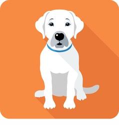 Dog labrador retriever sitting icon flat design vector