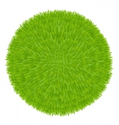 grass ball vector image vector image