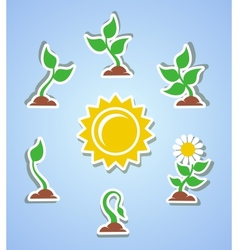 Growth progress icons vector