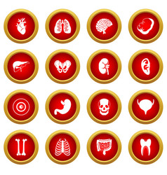 Human organs icon red circle set vector