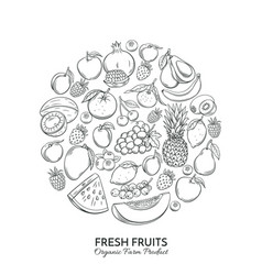 Poster round composition with hand drawn fruits vector