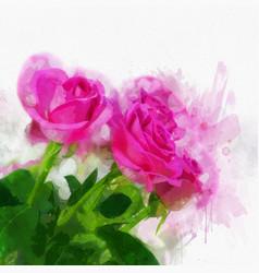Watercolour roses vector