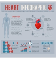 Human heart infographics vector