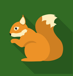squirrel icon in flat style for web vector image