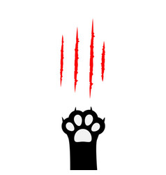 Black cat paw print leg foot bloody claws vector