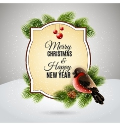 Christmas greetings card with robin bullfinch vector image