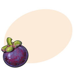 Whole unpeeled uncut purple mangosteen mangostin vector