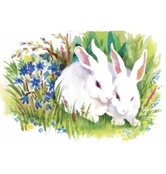 Watercolor rabbits in green grass vector