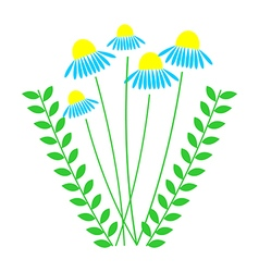 Daises with leaves isolated vector