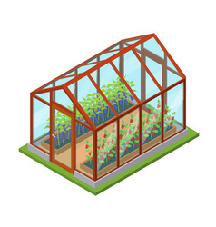 Greenhouse with flowers and plants isometric view vector