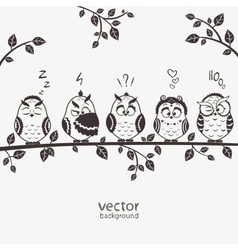 Owls five vector